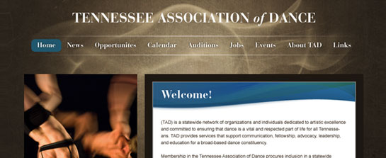 Tennessee Association of Dance image 1