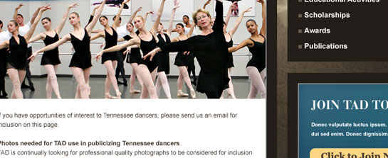 Tennessee Association of Dance image 3